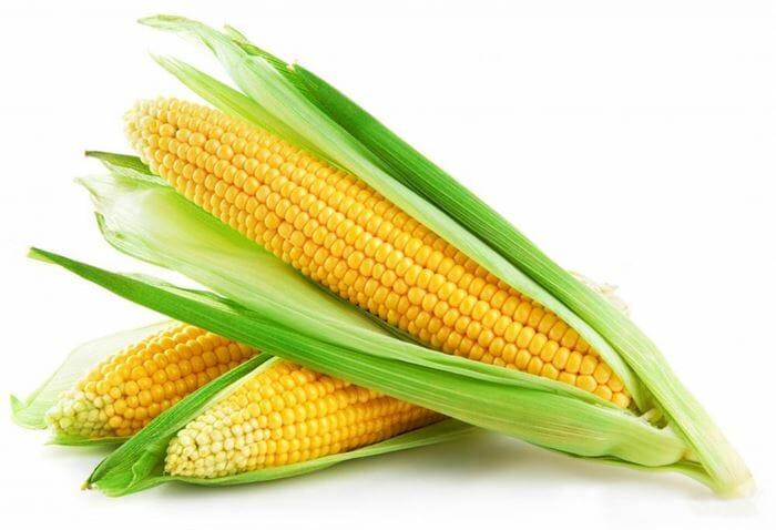 Corn Yellow 48ct Case