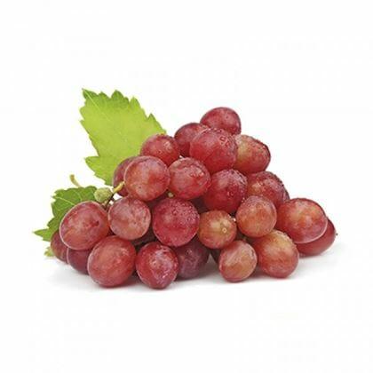 Globe Grapes 18lb CS